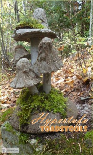 Hypertufa Mushrooms.Creating your Fairy Garden can begin by adding mushrooms that you can DIY|fairieholow.com